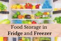 Food Storage in Fridge and Freezer